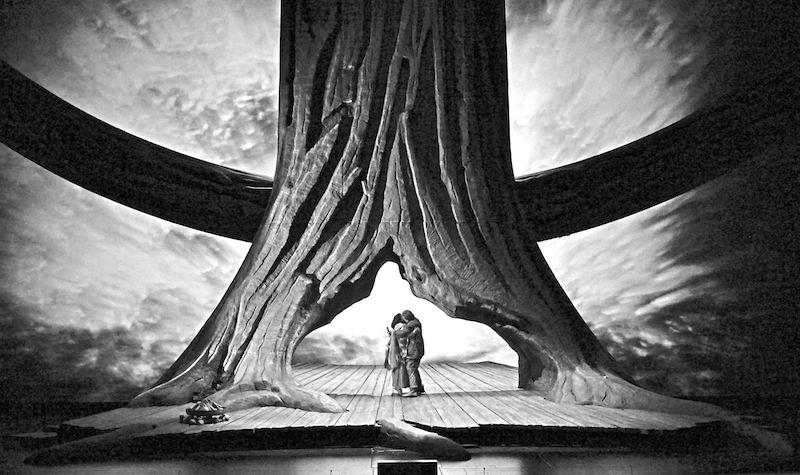 arbre et personnage